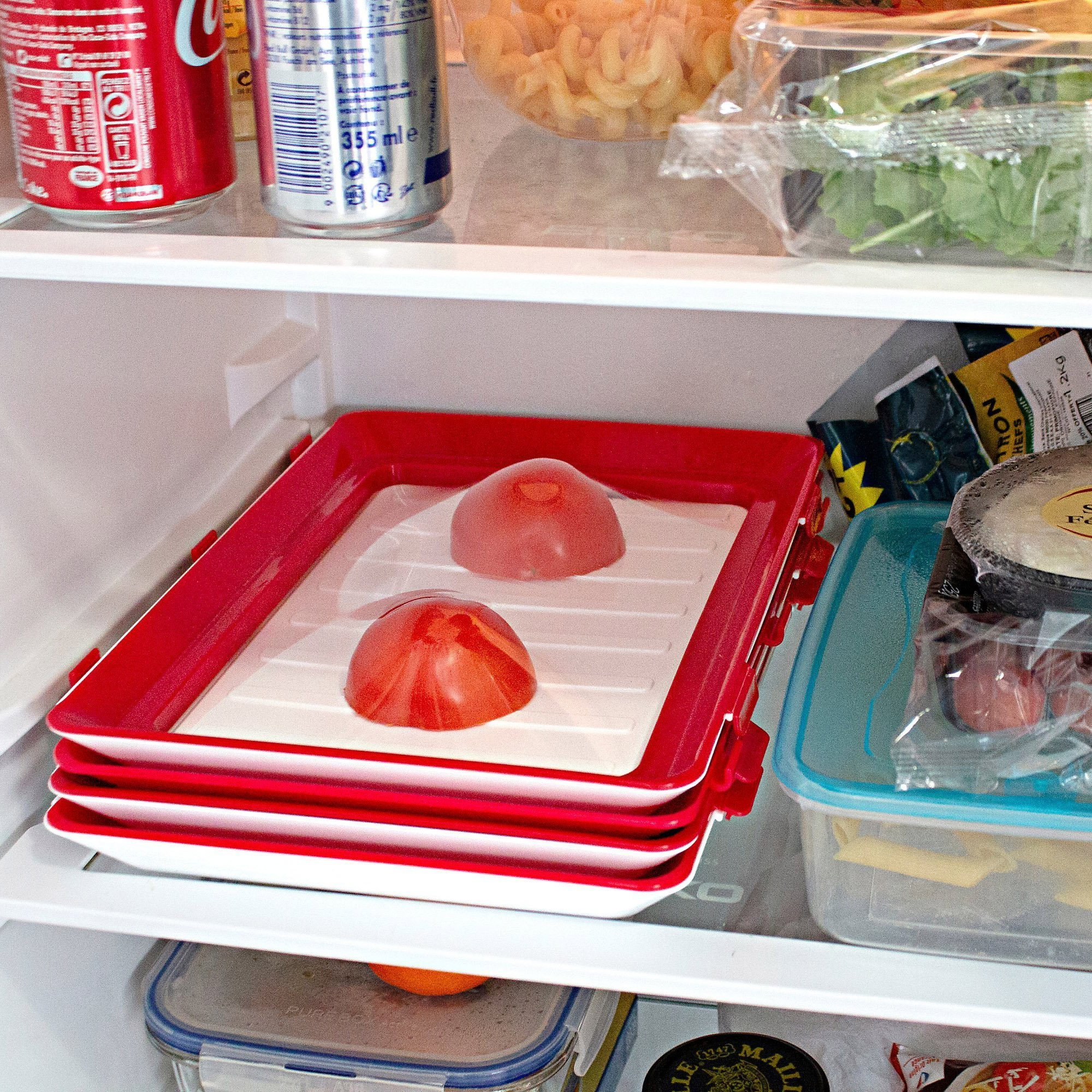 food preservation tray reviews