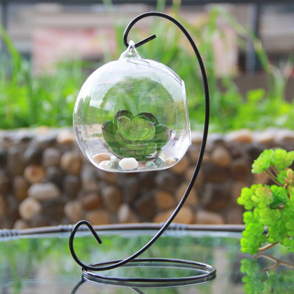 Teardrop Glass Terrarium