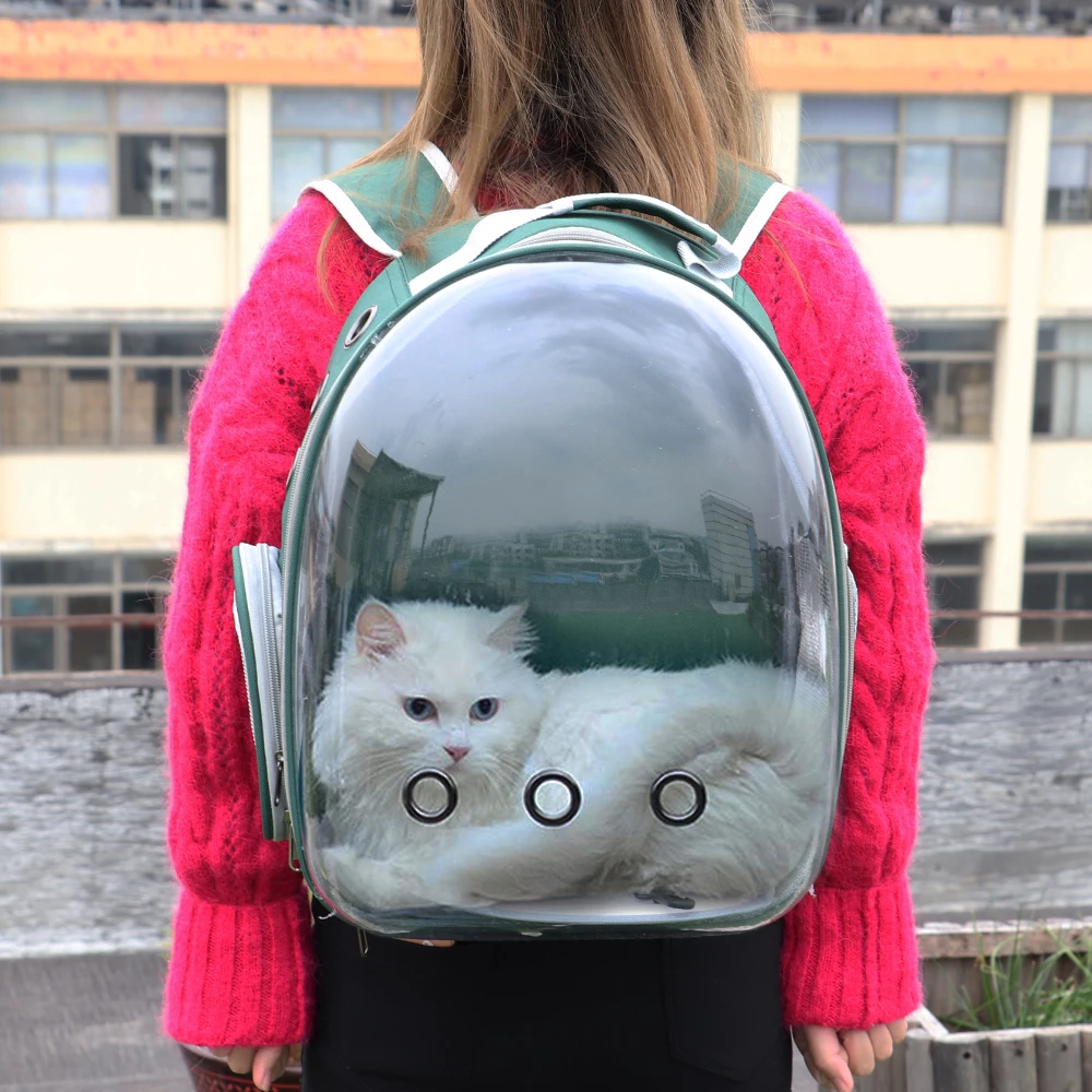 Cute Clear Cat Backpack Carrier