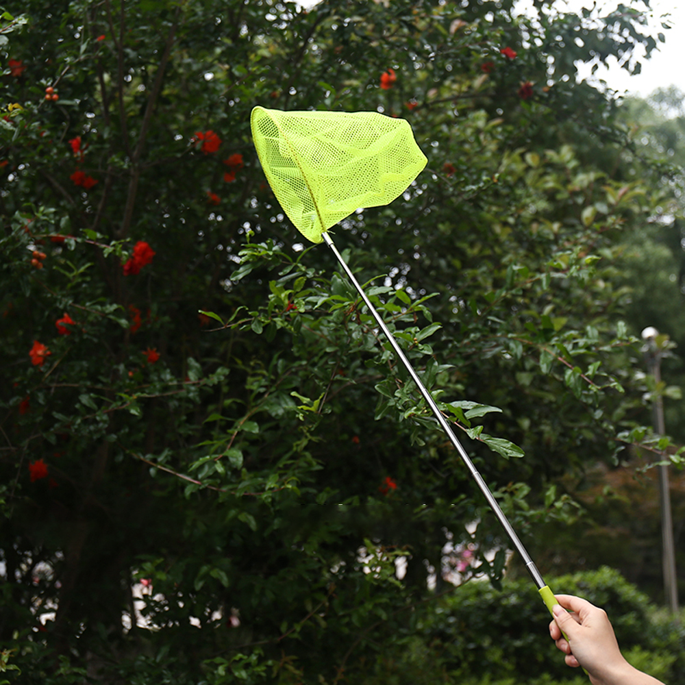 Telescopic Butterfly Net For Catching Bugs and Butterflies