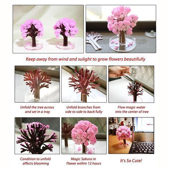 Magic Cherry Blossom Tree