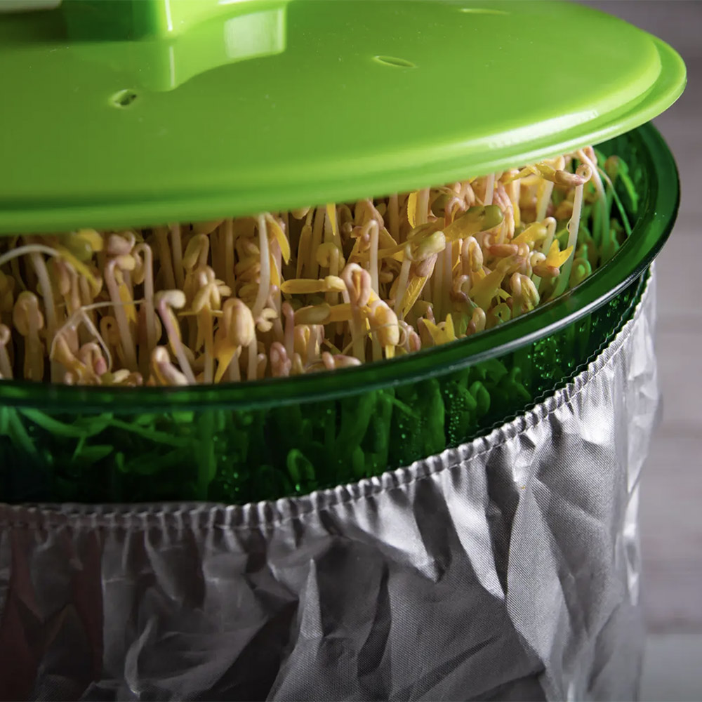 Multi-layered Automatic Bean Sprout Machine