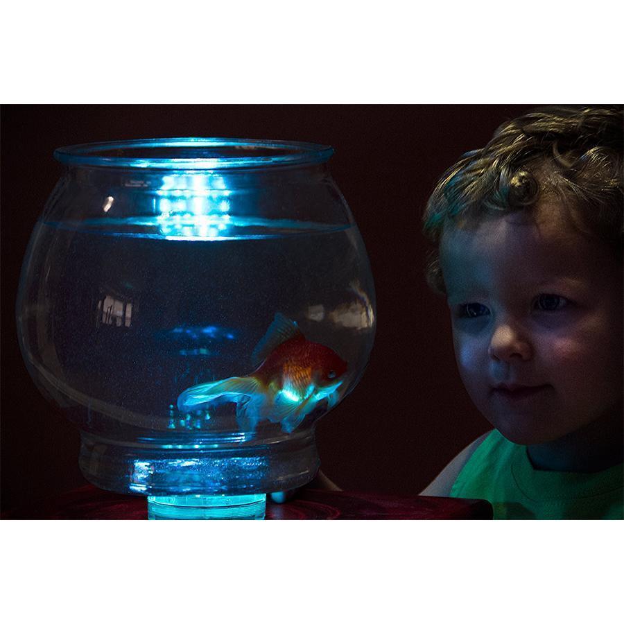Waterproof RGB LED Accent Lights