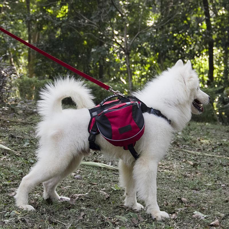 Outdoor Dog Backpack